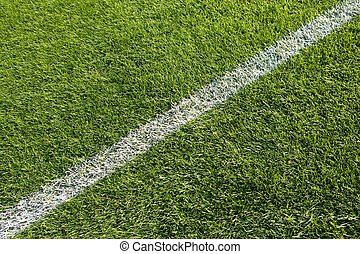Single line - White line on the grass of sporting stadium