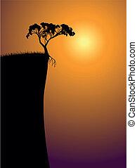 single lonely tree on a precipice
