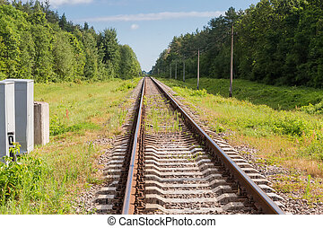 Single modern railroad tracks in the forest
