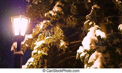 single night lantern illuminates the snow in the park