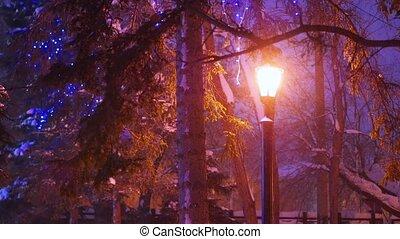 single night lantern illuminates the snowfall in the park