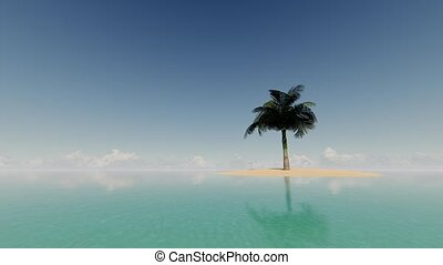 Single palm tree against the blue sky and ocean