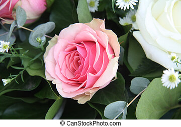 Single pink rose - A single solitair pink rose and some...