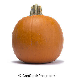 Single Pumpkin Isolated on White Background