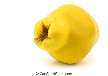 "quince fruit ""Cydonia oblonga"" - single quince fruit ""..."