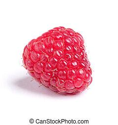 Single raspberry isolated