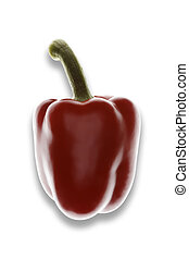 Single red pepper on a white background
