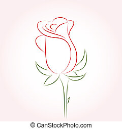 Single red rose on a pink backgroun
