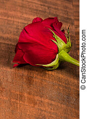 Single red rose on table