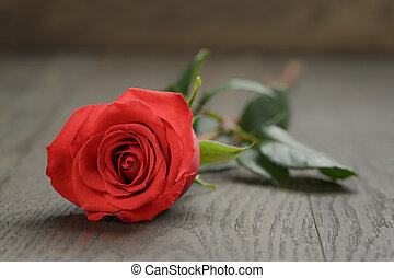 single red rose on wooden table