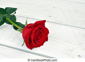 single rose on table