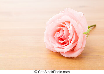 Single rose on table