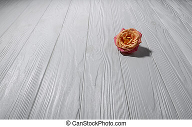 Single rose on white wooden surface