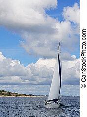 Single sail boat on the lake