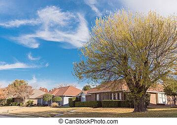 Single story bungalow houses in suburbs of Dallas with bright fall foliage colors