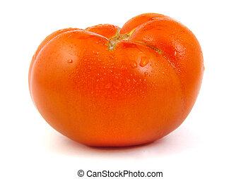 Single tomato on white background.