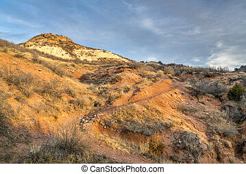 single track trail in Red Mountain Open Space - Sunset light...