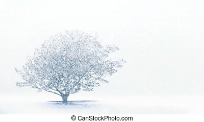 Single Tree In Field In Snowstorm