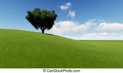 Single tree on grass field