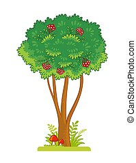 Single tree with berries on a white background. Vector illustration with rowan