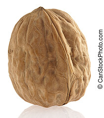walnut - single walnut isolated on a white background