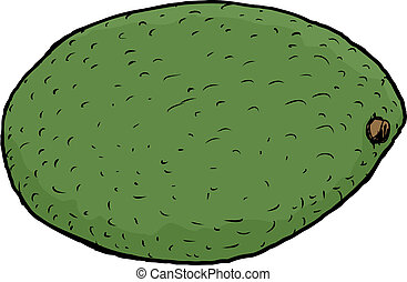 singolo, avocado, isolato