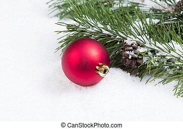 singolo, rosso, ornamento natale, con, stagionale, abete, ramo