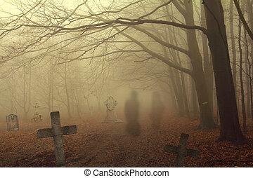 sinistro, cimitero, foresta
