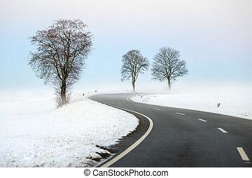 sinuosità, inverno, strada