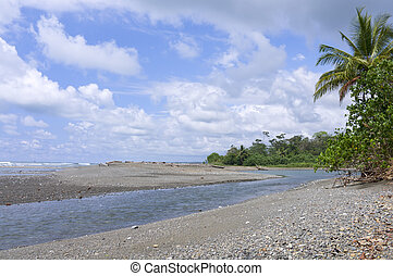 Sirena River and Pacific Ocean at Corcovado - Sirena River...