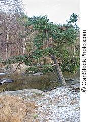Sisjon one little lake in sweden and