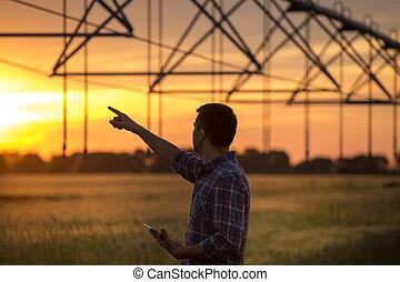 sistema de irrigación, mirar, campo, ocaso, granjero
