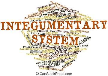 sistema, integumentary