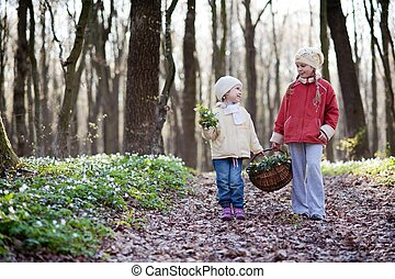 Sisters - An image of two sisters walking n the wood