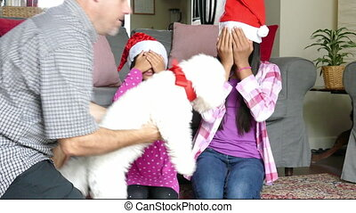 Sisters Get Fluffy Puppy For Xmas