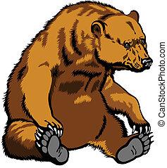 sittande, grizzly björn