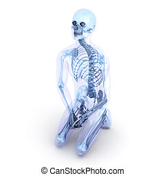 Sitting Anatomy