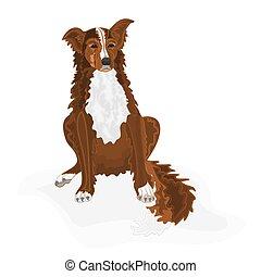 Sitting dog vector