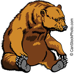 sitting grizzly bear - grizzly bear, sitting pose, image...