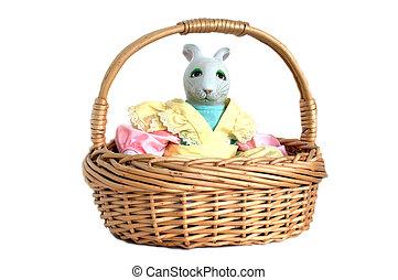 Sitting in a Basket