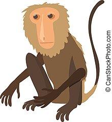 Sitting monkey icon, cartoon style