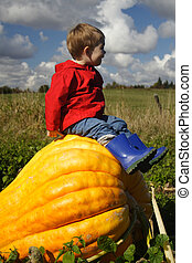 Sitting On A Pumpkin - A young boy wearing a red coat and...