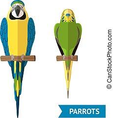 Sitting Parrots Set