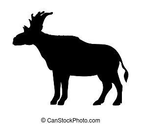 sivatherium, silhuett, utdöd, mammalian, djur