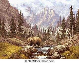 siwy, rockies, niedźwiedź