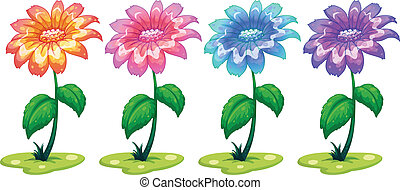 Six colorful flowering plants - Illustration of the six...