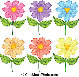 Illustration of the six colorful flowers on a white background