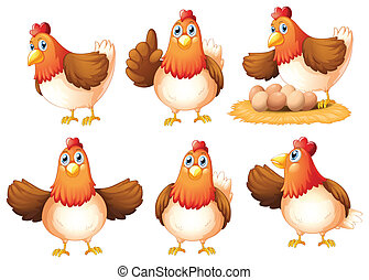 Illustration of the six egg-laying hens on a white background