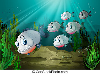 Six fishes with big fangs under the sea - Illustration of...