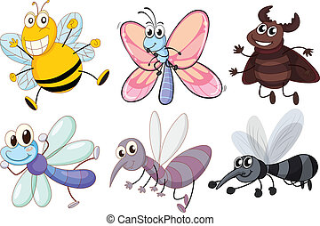 Illustration of the six flying insects on a white background